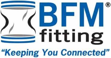 BFM-fitting.jpg