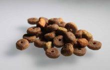 industrial process line for pet food kibbles Palamatic