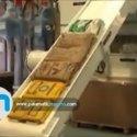 Rotaslit   Vide sacs automatique   Palamatic Process